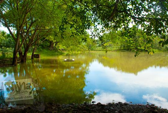 suasana asri alami pemandangan tegala namberan mata air sendang di paliyan gunungkidul pada zaman dahulu kondisi air meluap banjir menggenangi sumur