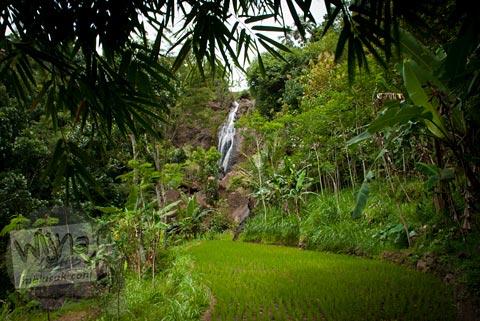 curug Banyunibo, Batur, Patuk, Gunungkidul dilihat dari kejauhan persawahan