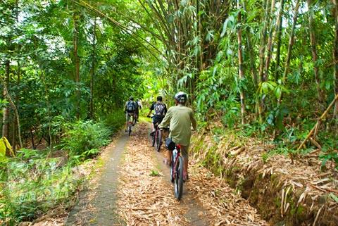 jalan desa batur menuju curug Banyunibo, Batur, Patuk, Gunungkidul
