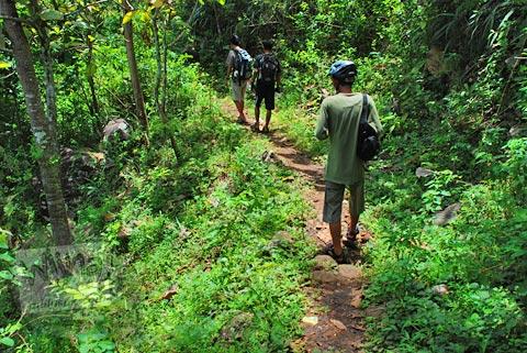Jalan masuk hutan menuju curug Banyunibo, Batur, Patuk, Gunungkidul