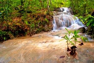 Antara Gua dan Curug Payaman di Desa Argorejo Sedayu