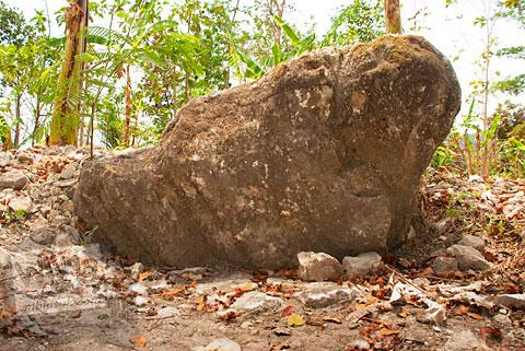 wujud situs batu gajah, ngoro-oro gunungkidul