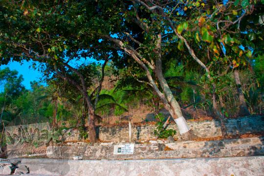Lokasi pelaksanaan ritual Ngalangi di pantai wediombo gunungkidul