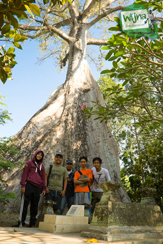 makam dan pohon randu alas raksasa dekat masjid Kauman Keraton Pleret di Pleret, Bantul