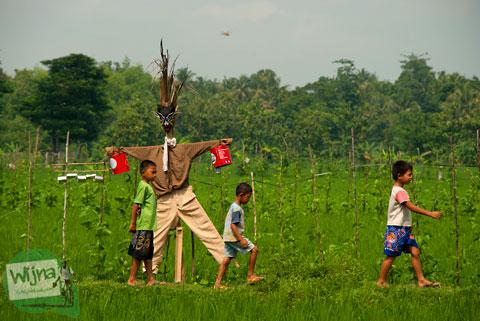 Cerita mistis Memedi Sawah menculik anak-anak menjelang magrib di Desa Wisata Candran, Kebonagung, Imogiri, Bantul