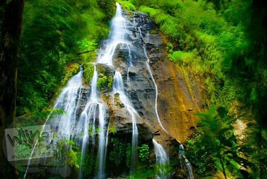 pemandangan kondisi aliran air obyek wisata air terjun curug benowo di desa benowo, bener, purworejo, jawa tengah saat puncak musim hujan