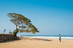 Thumbnail artikel blog berjudul Kesiangan di Pantai Pok Tunggal