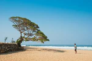 Thumbnail untuk artikel blog berjudul Kesiangan di Pantai Pok Tunggal