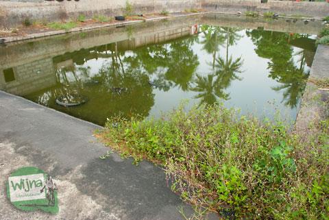 Sisa-sisa bangunan proyek pengairan pemerintah yang masih bisa disaksikan di lokasi mata air Umbul Pajangan di Desa Wedomartani, Ngemplak, Sleman, Yogyakarta pada tahun 2012