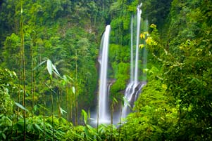 Thumbnail untuk artikel blog berjudul Jalan Rusak ke Air Terjun Sekumpul