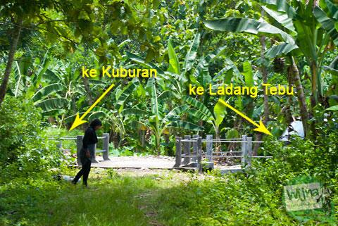 Jalan percabangan ke ladang tebu dan ke kuburan saat berjalan kaki menuju air terjun Tritis Prambanan