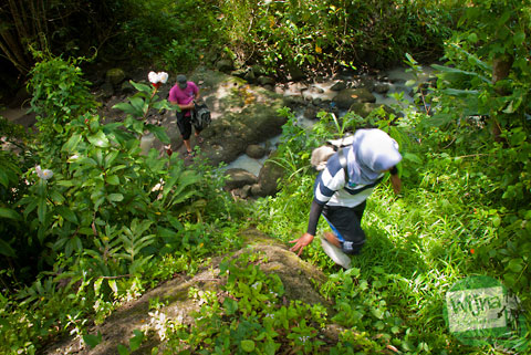 menyeberang sungai dan mendaki bukit demi air terjun tritis di cepit, prambanan