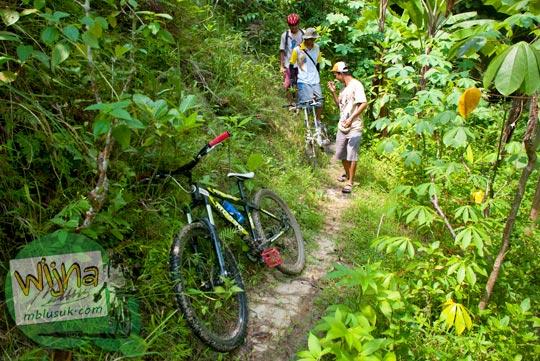 Masuk hutan menuju Curug Pulosari Krebet saat belum terkenal di tahun 2013