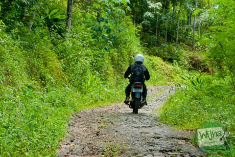 Jalan ke Curug Nabag di dusun Benowo, kecamatan Bener, Kabupaten Purworejo, Jawa Tengah
