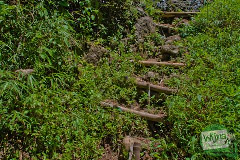 tersasar jalan saat menyusuri jalan hutan di dusun Benowo, Purworejo, Jawa Tengah