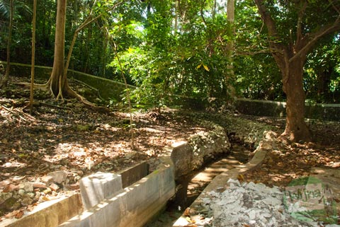 Suasana asri di mata air Ngeleng yang bertempat di desa Giritirto, Purwosari, Gunungkidul
