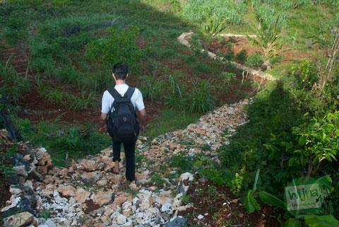 jalan setapak menuju pantai ngrumput gunungkidul