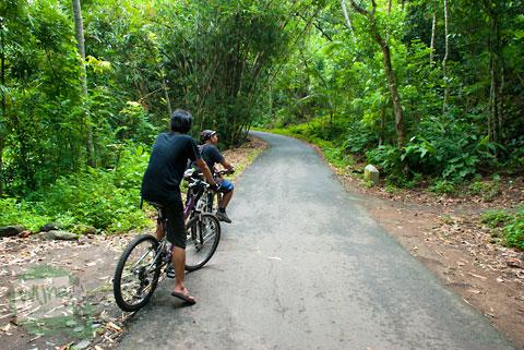 ruas jalan rata yang ada di Tanjakan Petir – Umbulsari arah ke ngoro-oro pathuk gunungkidul