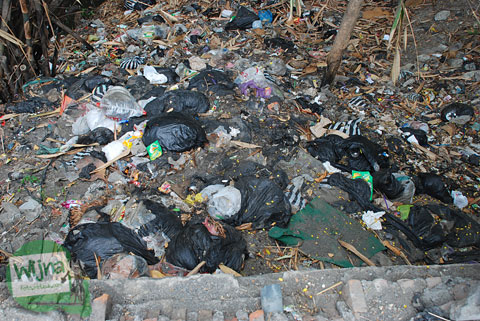 Antara Anjing dan Sampah