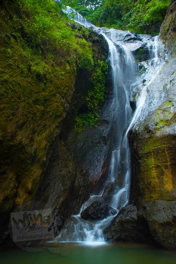 Air terjun tersembunyi di Pelosok Purworejo di dalam hutan Perbukitan Menoreh