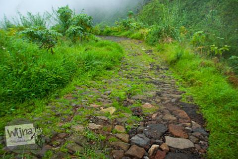 jalan rusak berkabut dari Desa Sembungan menuju Air Terjun Sikarim