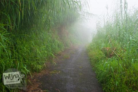 Jalan pulang dari Air Terjun Sikarim menuju Dieng Kulon berkabut tebal, angker, dan rawan aksi kejahatan