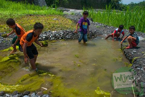 Anak-anak bermain mencari lumut kotor di kubangan Kali Boyong, Cangkringan, Yogyakarta