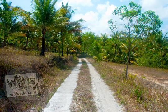 akses jalan sempit menuju pantai grojokan banyutibo donoharjo pacitan zaman dulu saat belum diperlebar pada tahun 2013