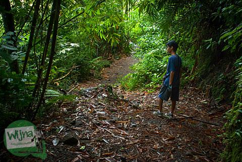 seorang cowok melintasi jalan setapak di dalam hutan dalam perjalanan mencari pancuran dewi nawangwulan di desa wisata pentingsari, cangkringan, sleman
