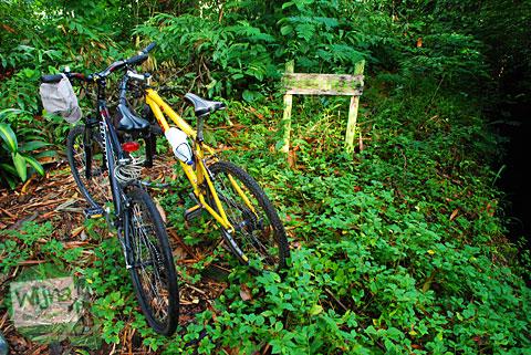 Bersepeda masuk hutan demi Pancuran Dewi Nawangwulan yang letaknya di desa Umbulharjo, Cangkringan, Sleman DI Yogyakarta