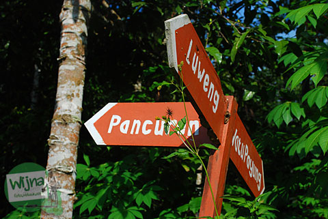 papan kayu yang menunjukkan arah objek-objek menarik di sekitar desa wisata pentingsari alias dewi peri yang lokasinya terletak di umbulharjo, cangkringan, sleman
