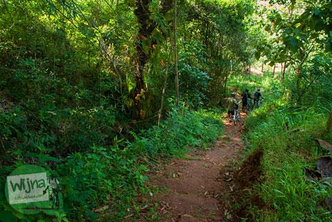 Jalan tanah setapak yang licin dan menurun di kawasan Desa Wisata Jurug Taman Sari menuju Curug Lengkongsari, Gunungkidul