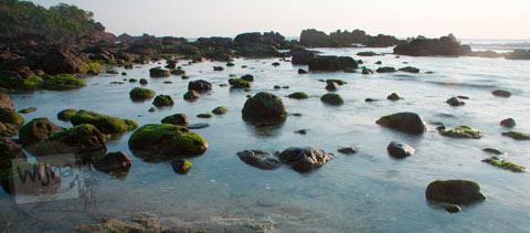 Mblusuk Motret Ombak di Laut Yogyakarta