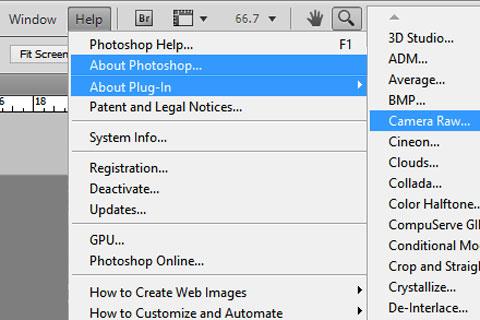 Cara Membuka File RAW Nikon dan Canon di Photoshop versi lama Pakai Adobe Camera Raw
