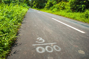 Thumbnail artikel blog berjudul Pikiran Liar Sepanjang Jalan Aspal 4 km