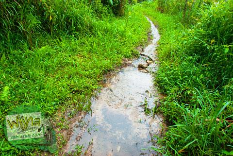 Jalan becek berlumpur menuju Air Terjun Pendung, Kerinci, Jambi