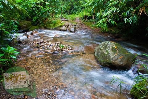 Menyebrang sungai mistis menuju Air Terjun Pendung, Kerinci, Jambi