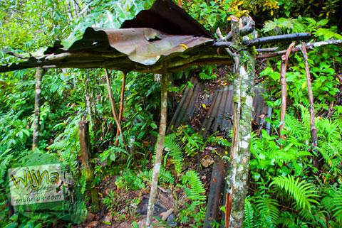 Bilik perambah hutan di Air Terjun Pendung, Kerinci, Jambi