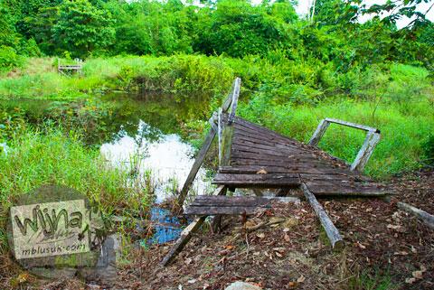 Jembatan Kayu Putus Diterjang Banjir Sungai Batanghari di Candi Kedaton di Muaro Jambi