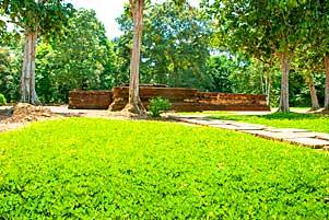 Thumbnail artikel blog berjudul Candi Astano Muaro Jambi dengan Padang Bunga Mungil