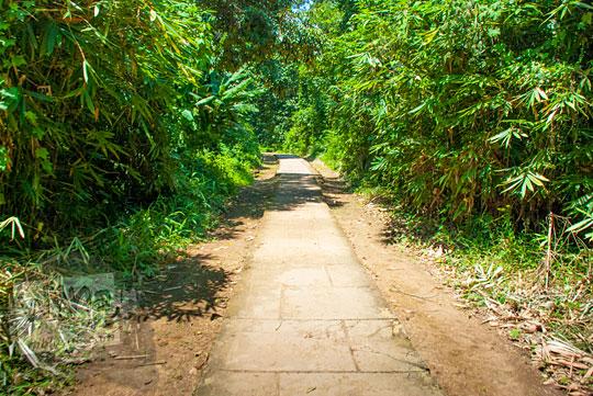 Kondisi dan suasana jalan setapak dari Candi Tinggi menuju Candi Astano Muaro Jambi pada tahun 2015