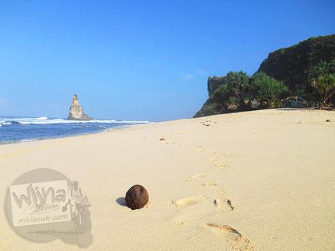 Harga kelapa muda di Pantai Buyutan, Pacitan, Jawa Timur