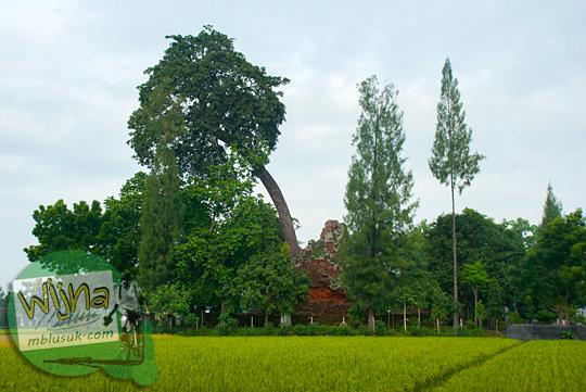 Lokasi Candi Lor Nganjuk di Loceret yang berada di tengah sawah dan tertutup pepohonan di tahun 2015