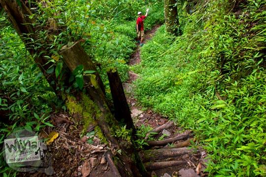 pengunjung melintasi jalan hutan yang angker dan licin menuju Air Terjun Singokromo, Sawahan, Nganjuk pada tahun 2015