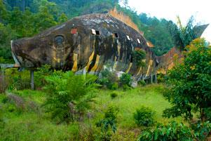 gambar/2015/sumatera-utara/ikan-sipolhatb.jpg?t=20180621153023814