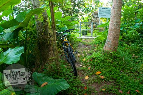 Benda purbakala peninggalan kerajaan Mataram Kuno yang tersembunyi di dalam hutan Dusun Dawangsari di Prambanan, Yogyakarta