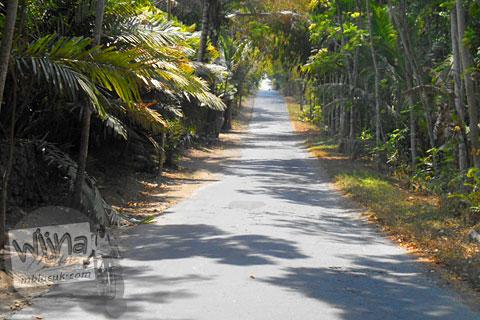 Jalan menanjak sepi untuk sepeda downhill di Turi, Sleman di tahun 2015