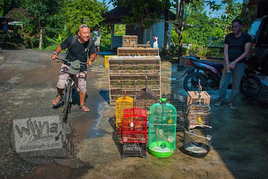 kios penjual burung di pinggir jalan desa pucungrejo srumbung imogiri