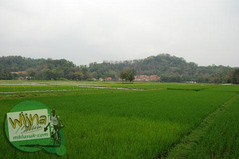 Dusun Kandangan di Seyegan, Sleman