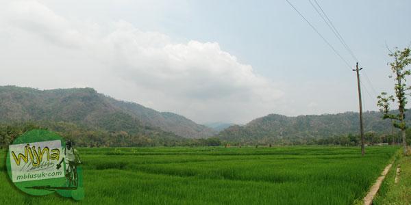 Panorama bukit dan sawah di desa Boro, Kalibawang, Kulon Progo